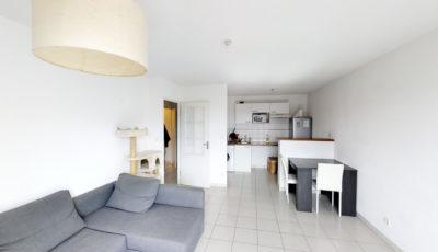 Appartement de 45m² à Seysses 3D Model